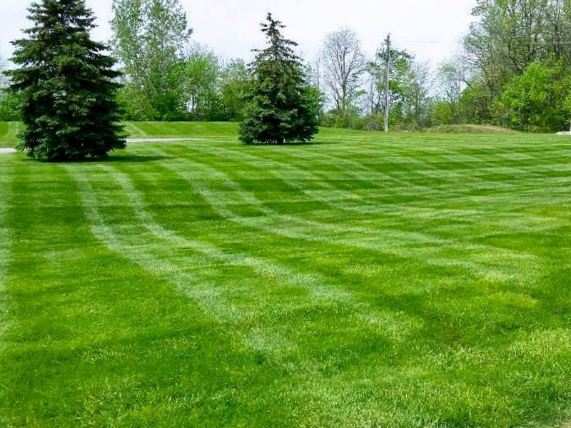 grounds_maintenance