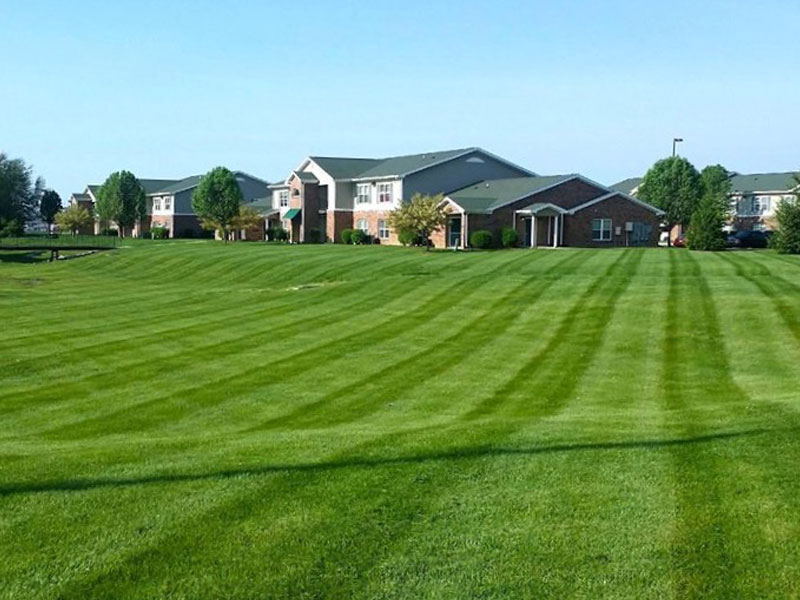 mowing-services