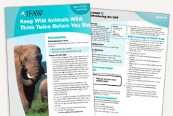 Free Animal Preservation Lesson Plans & Teaching Resources From We Are Teachers