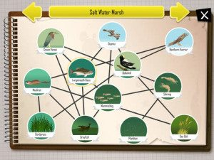 Ecosystem App for iPads iBiome-Wetland Exploration 2
