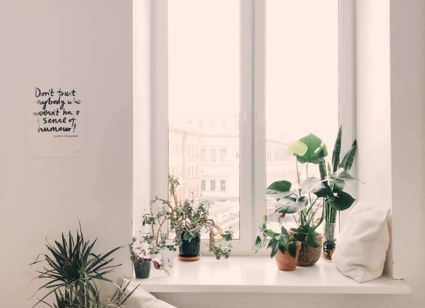 How to Make Your Room a Vibe in Six Steps