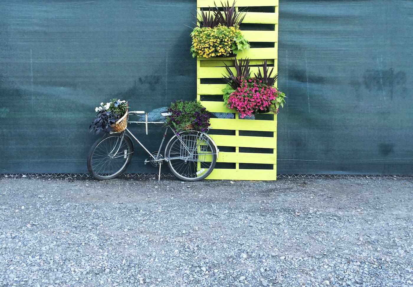 Firefly-Bike