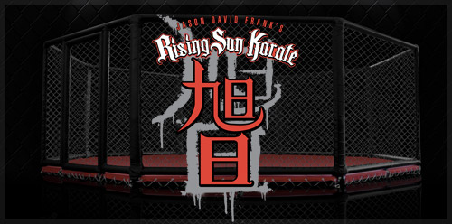 Rising Sun Karate School Website