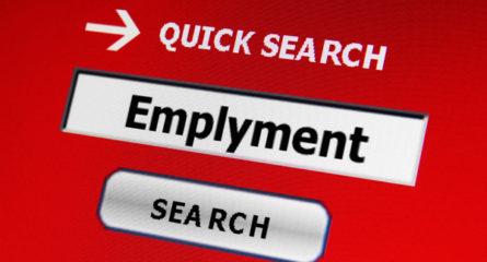Career Job Boards an