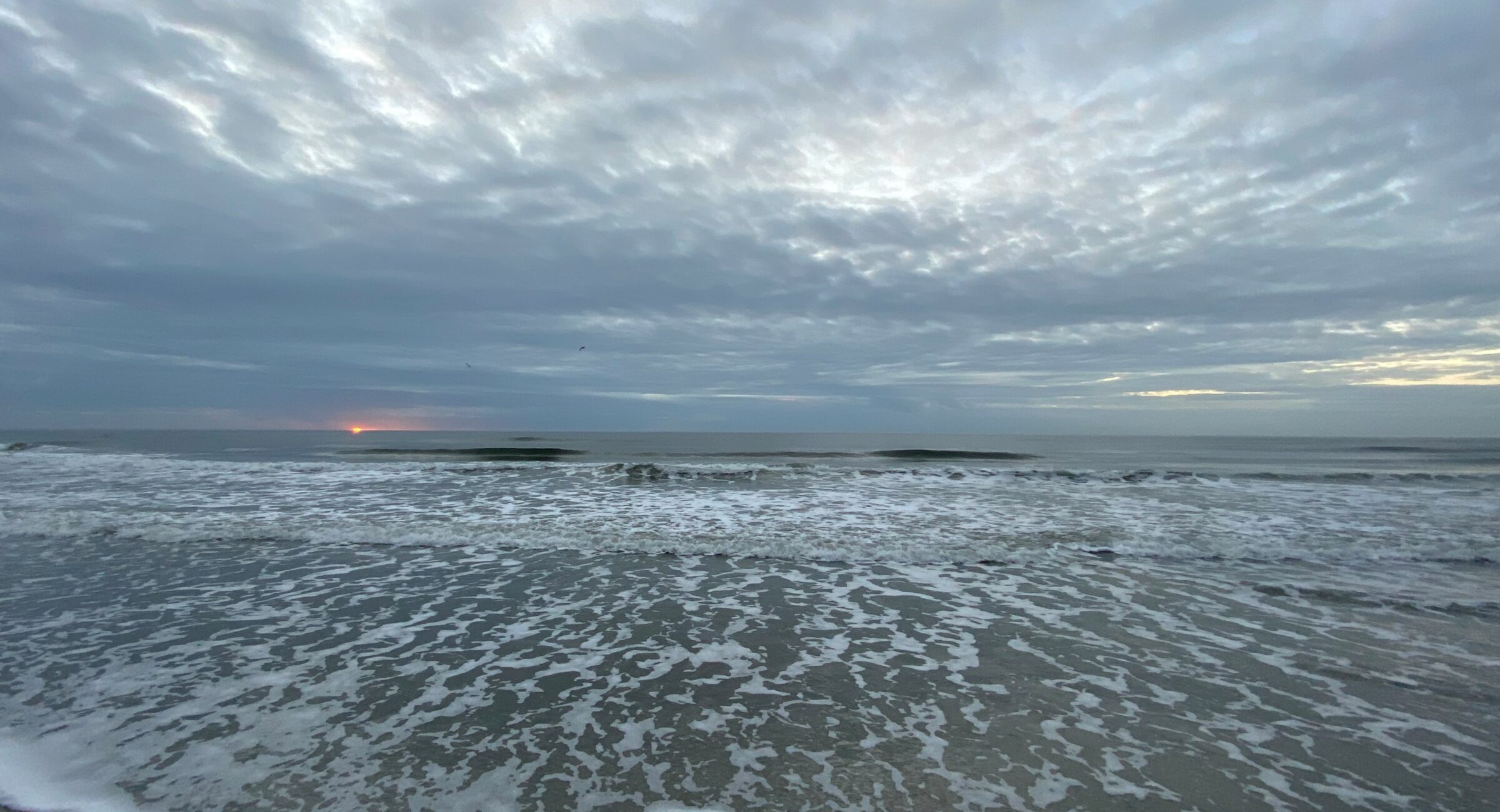 Ocean_NMB