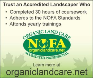 Trust an Organic Professional Graphic