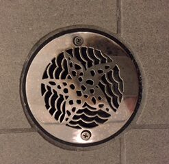 Shower Drain Cover Replacement.4 Inch Round Shower Drain Cover Oceanus Star Fish