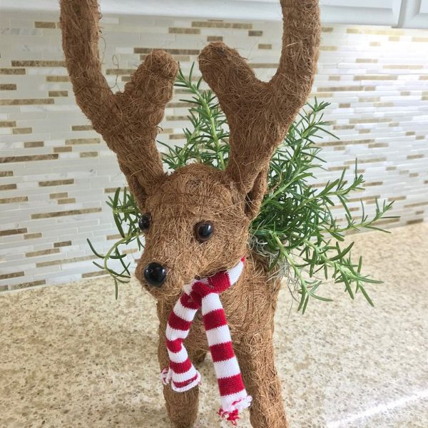 Reindeer Coco Planter by Ultimate Innovations