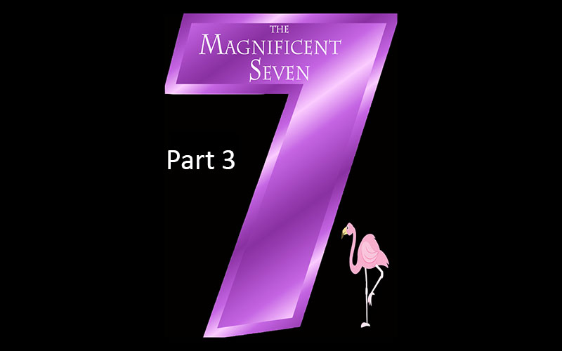 The Magnificent 7 Series – Part 3