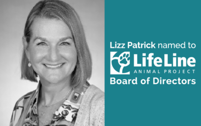 Lizz Patrick named to LifeLine Animal Project Board of Directors