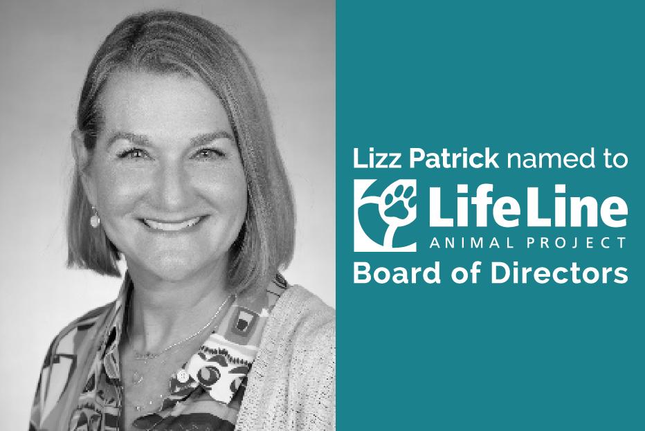 Lizz-LifeLine-
