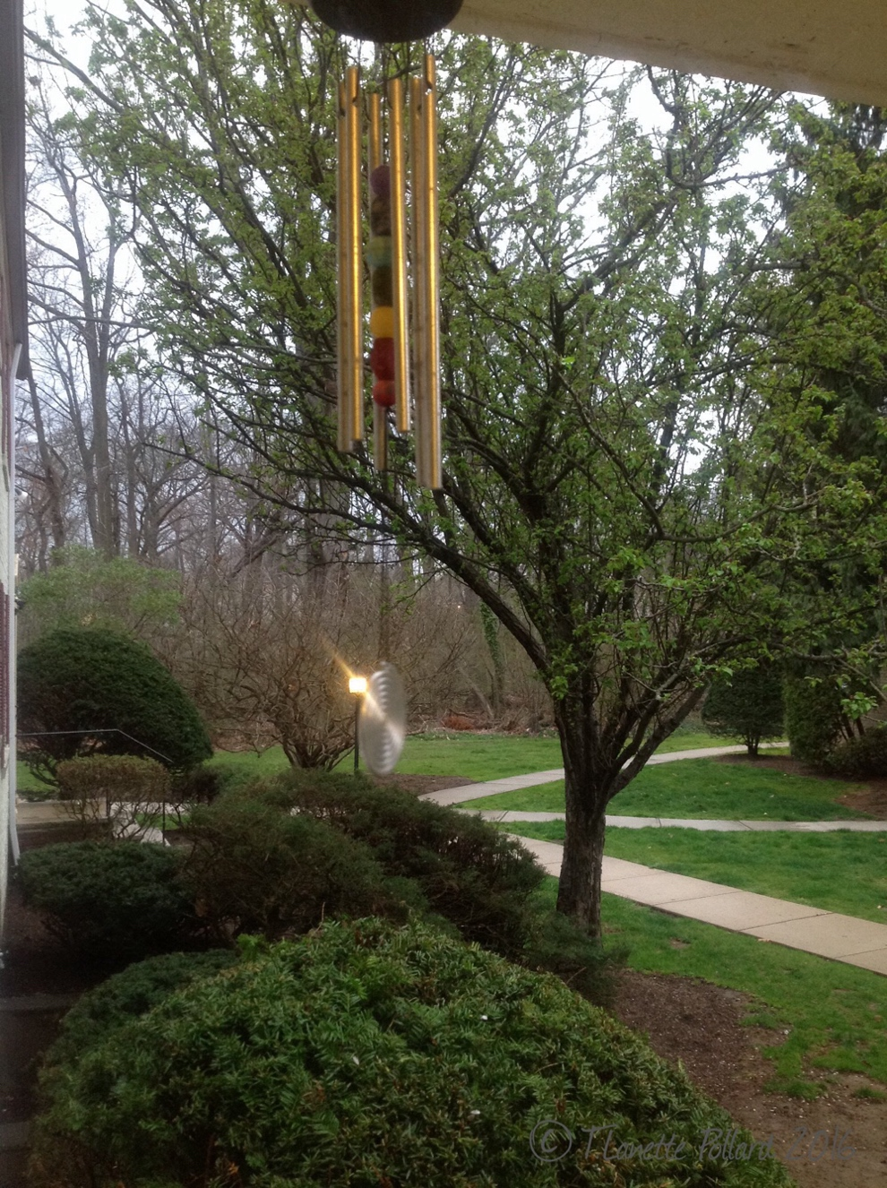 Photo: Wind Chimes in the Storm