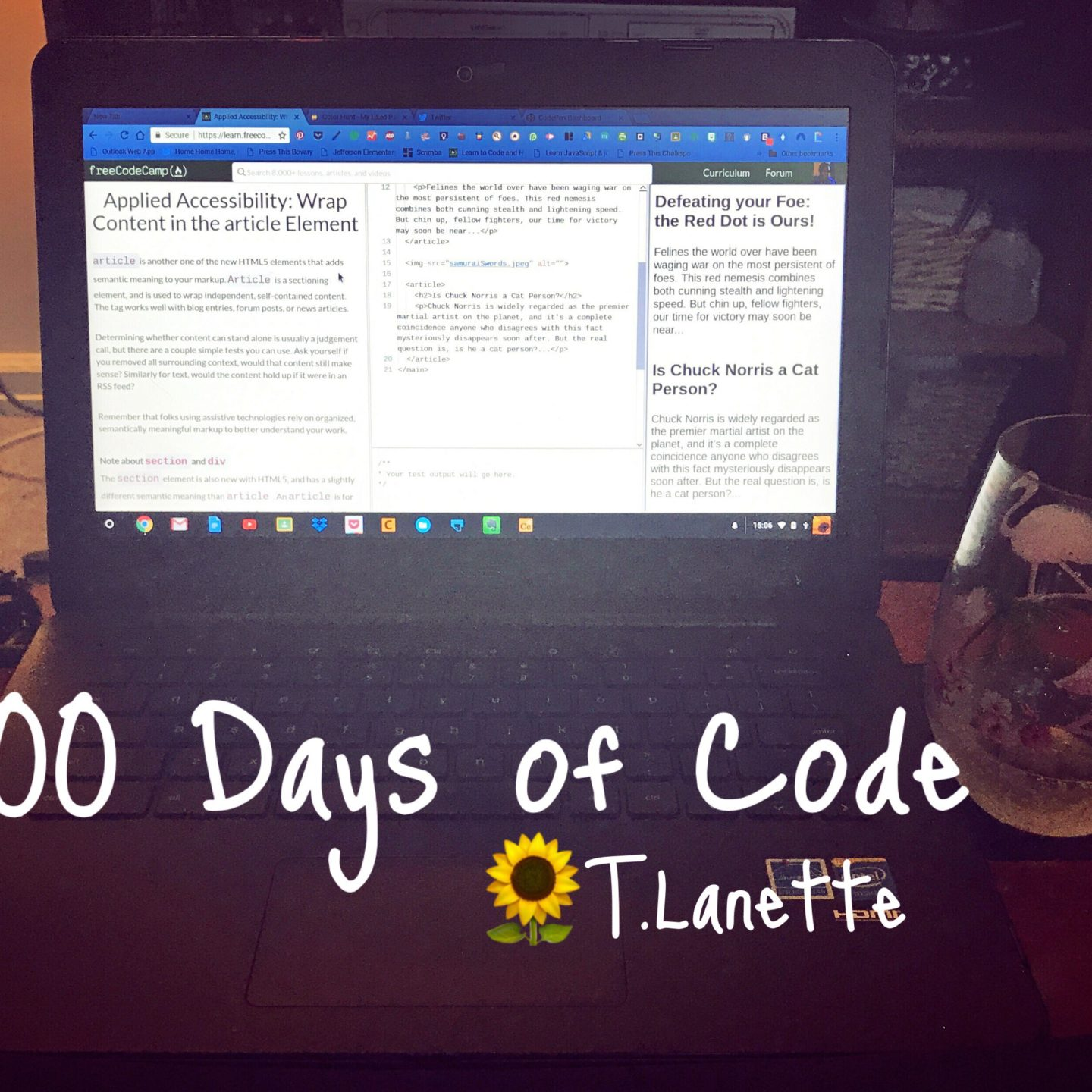 Finished My JavaScript Tutorial: #100DaysofCode