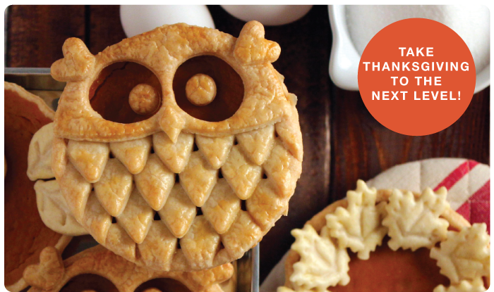Take Fall to the next level with these Owl Pumpkin Pies!