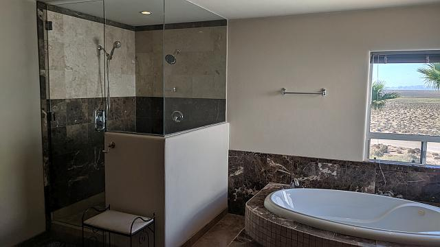 Shower-Jacuzzi Master Bedroom