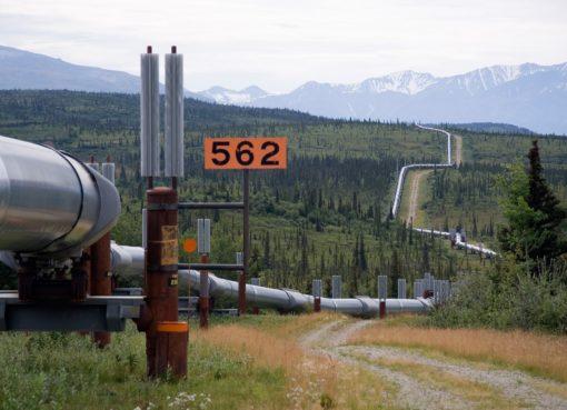 Oil Pipeline   Eco Alerts