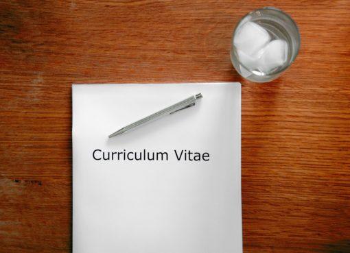 CV - Resume   EconAlerts