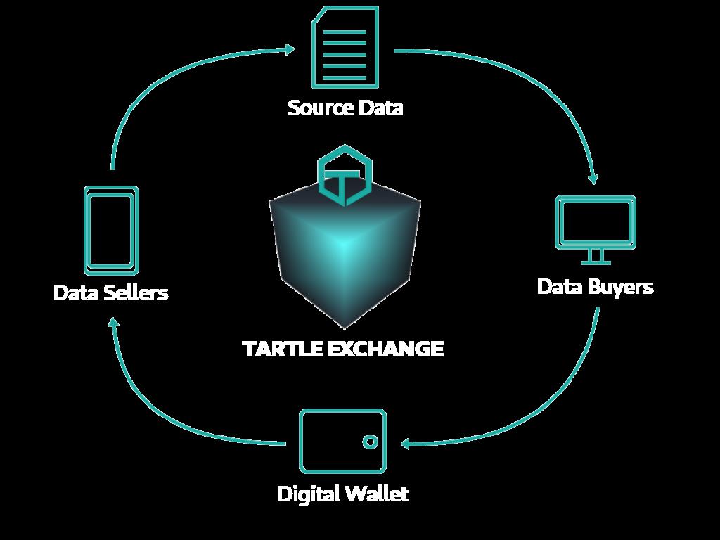 TARTLE Exchange Flow Diagram