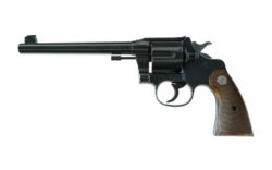 Colt New Service Target