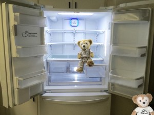 Duffy the Disney Bear sits in his brand new LG Dare French Door Refrigerator