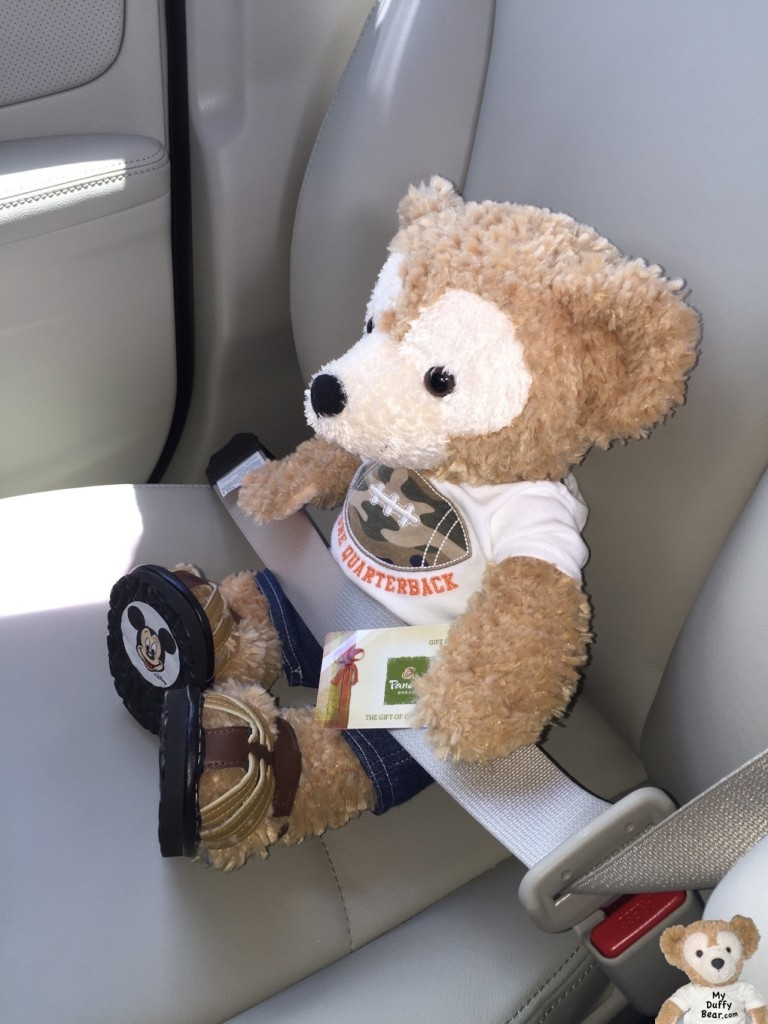 Duffy the Disney Bear travels to Panera Bread with this Panera Bread Gift Card