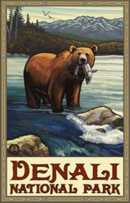 National Park Poster Decor - Denali