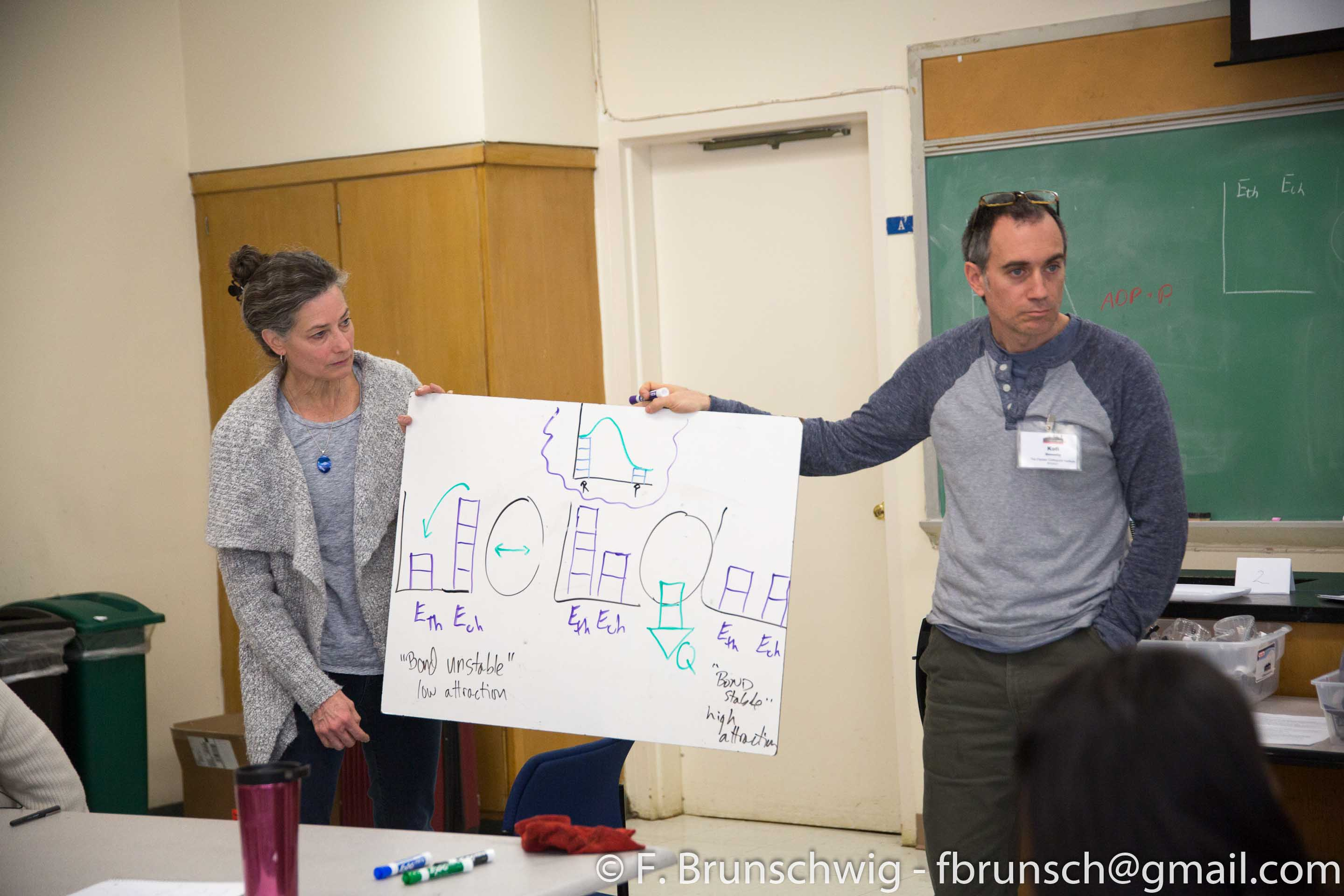 Energy, Bonds, and Avoiding Misconceptions in the STEM Classroom