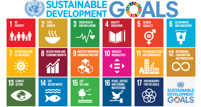 EcoSTEM: Infusing Sustainability Across Your Curriculum with SDGs