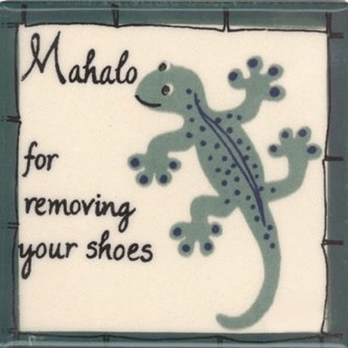 Geckos Remove Shoes