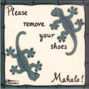 2 Geckos Remove Shoes