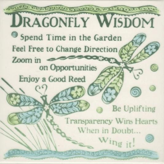 Dragonfly Wisdom
