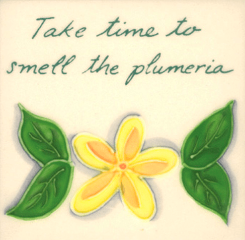 "Take Time Plumeria 4"" Tile"