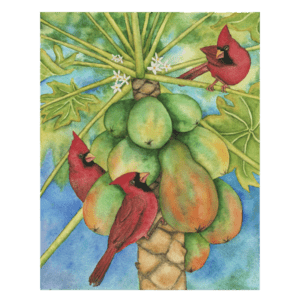 Cardinals in the Papayas Giclée
