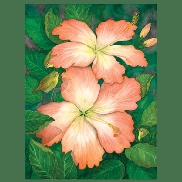 Hibiscus & White Eyes Giclée