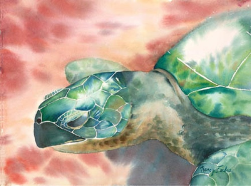 Beach Turtle Nancy Forbes