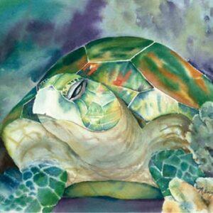 Green Turtle Nancy Forbes