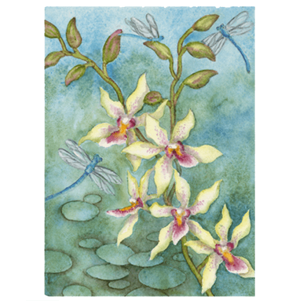 Orchid & Dragonflies in Blue Giclée