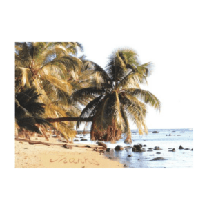 Thanks (Pakala Beach) Greeting Card