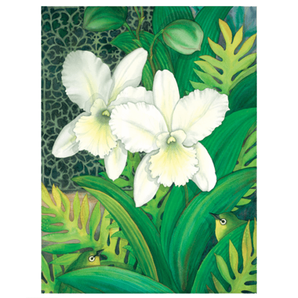 White Orchids & White Eyes Giclée