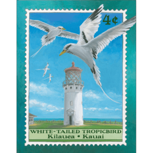 White-Tailed Tropicbird /Kilauea Lighthouse