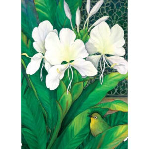 White Ginger Greeting Card