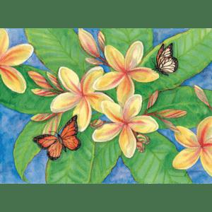 Plumeria & Butterflies Print Joanna Carolan
