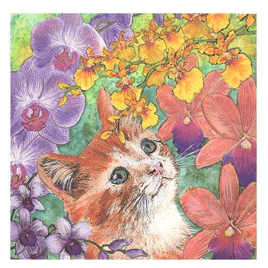 Cat Among Orchids I Print
