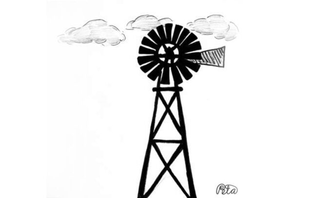 Windmill in the clouds, Illustrated by Peta Manning