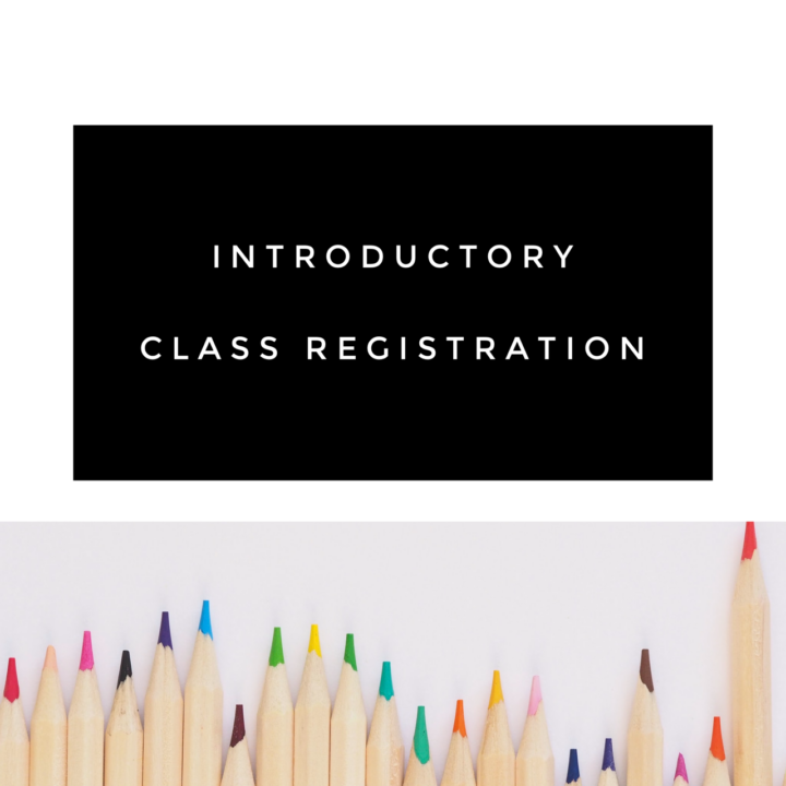 Free Introductory Art Class