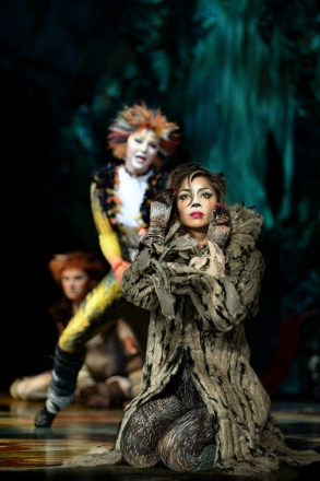 Nicole Scherzinger as Grizabella (photo Uli Weber) 6711 (293x440)