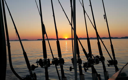 Sunset Fishing Poles