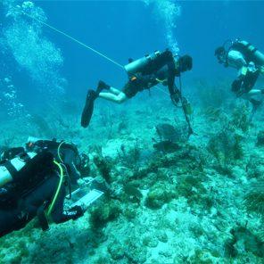 A group of scuba divers