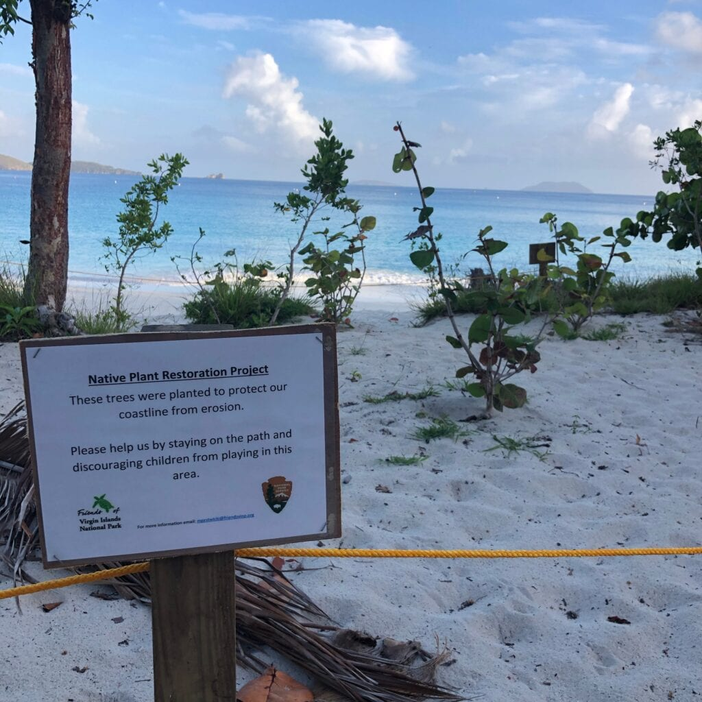Native plant restoration project sign