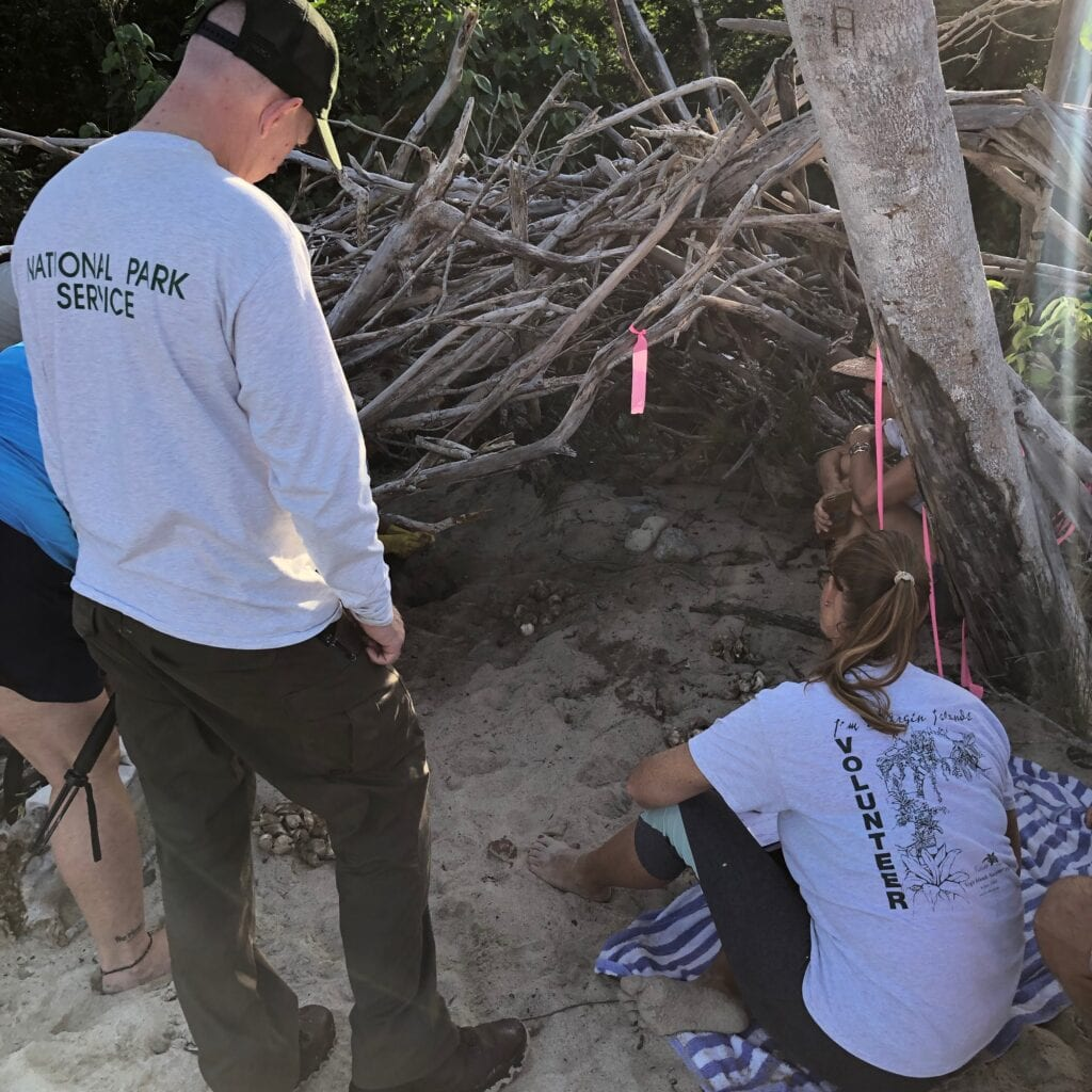 National Park Service Crew checking a sea turtle nest